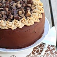Epic Peanut Butter Cup Cheesecake Cake