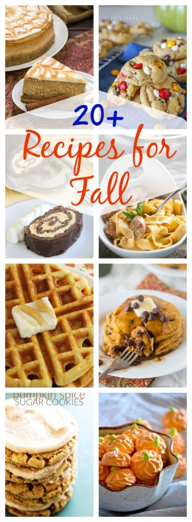 20+ Fabulous Fall Recipes