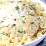 Creamy Slow Cooker Garlic Chicken