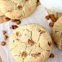 The Best Cinnamon Chip Snickerdoodles