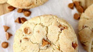 The Best Cinnamon Chip Snickerdoodles