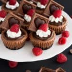 Mini Triple Chocolate Cheesecakes
