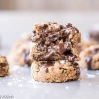Coconut Flour Chocolate Chip Cookies (Paleo, Vegan + Nut-Free)