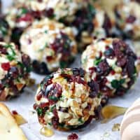 Cranberry Nut Goat Cheese Bites
